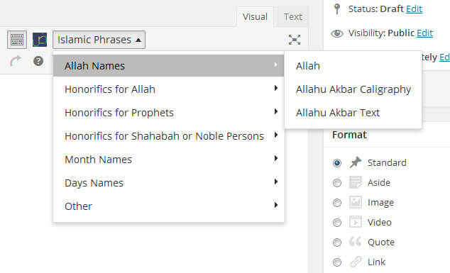 Screenshot Islamic Phrases